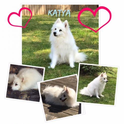 Katya3