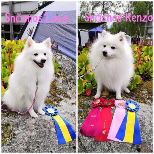 Lova & Kenzo